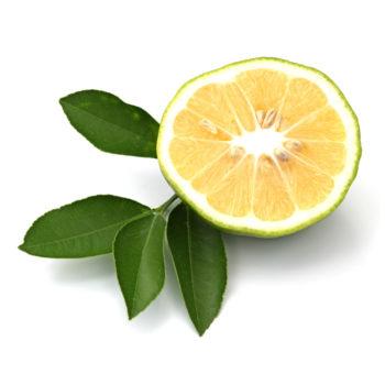 01-bergamotto-belforte