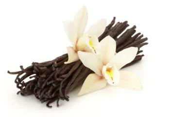 01-vanilla-pure-belforte