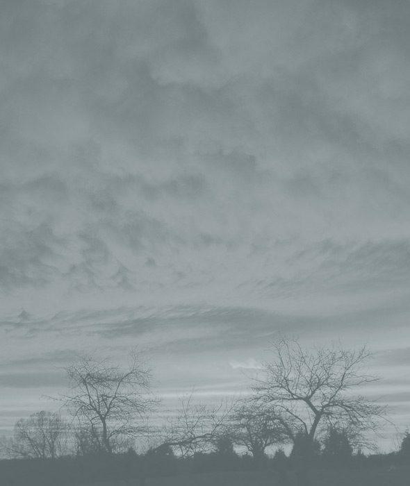 03-ambra-belforte