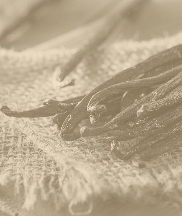03-vanilla-pure-belforte