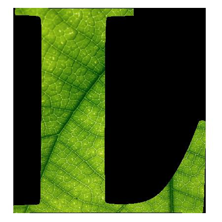 Linfa Profumo Ambiente Verde